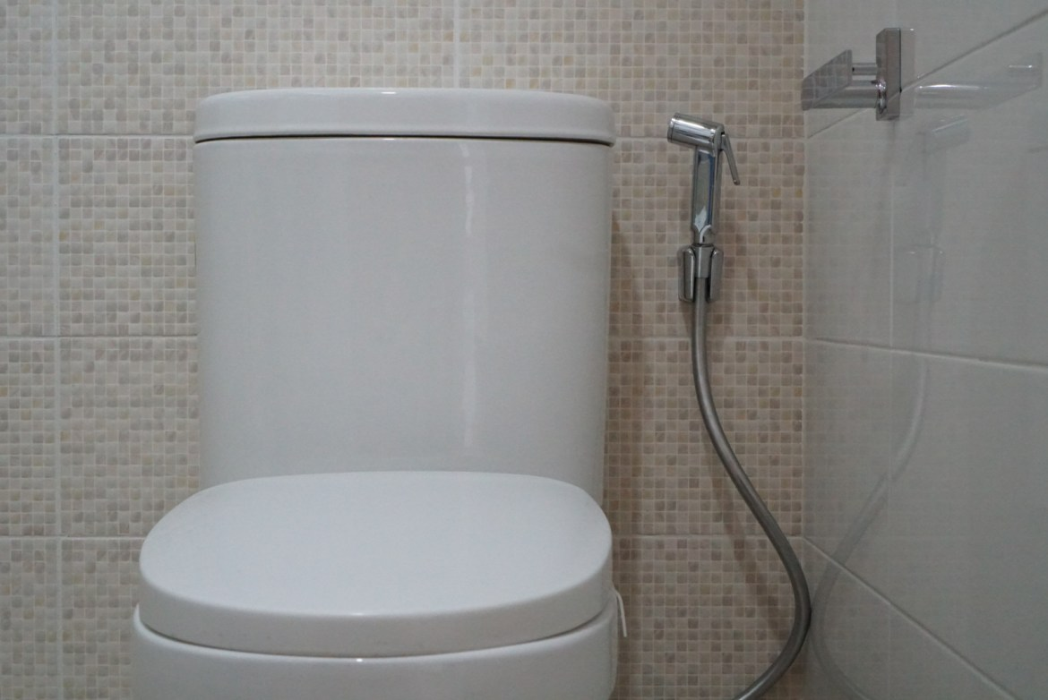 Econflo Systems_Schell paper holder and Insprione Rectania hand bidet spray