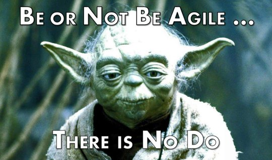 Yoda-Be-or-Not-Be-Agile-Meme (Small)