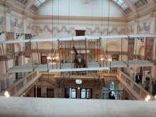 Bristol, museum