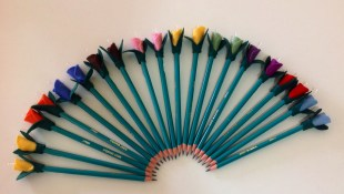 Lápis florido!