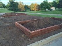 More raised beds in the erstwhile rose garden.