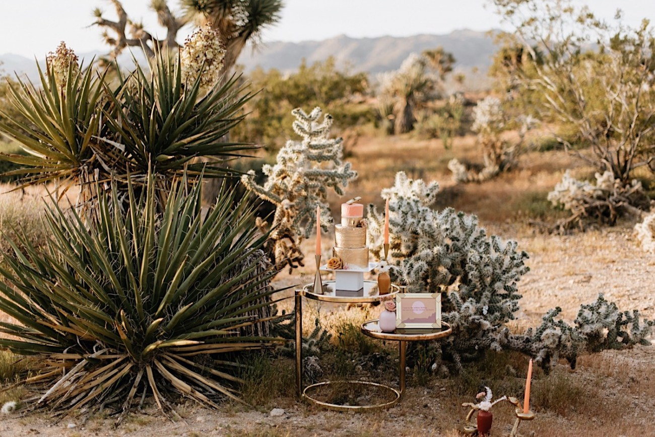 Joshua Tree Same Sex Wedding Joshua Tree Wedding Photographer Palm Springs Wedding Photographer 01