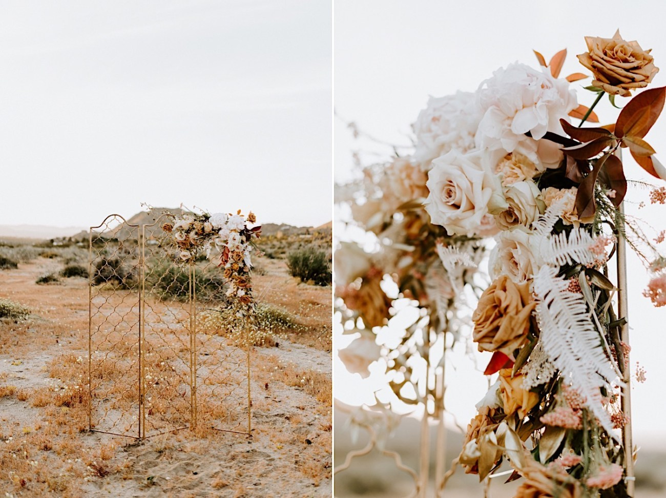 Joshua Tree Same Sex Wedding Joshua Tree Wedding Photographer Palm Springs Wedding Photographer 28