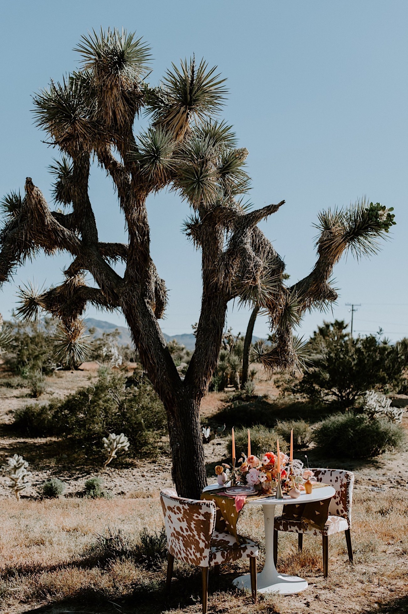 Palm Springs Elopement Los Angeles Elopement Photographer Desert Elopement 04