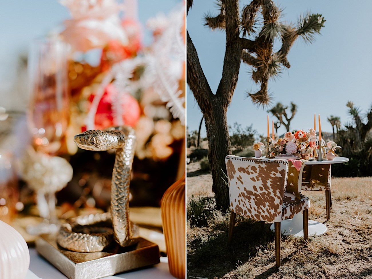 Palm Springs Elopement Los Angeles Elopement Photographer Desert Elopement 09