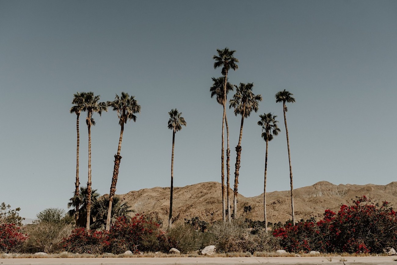 Palm Springs Elopement Los Angeles Elopement Photographer Desert Elopement 13