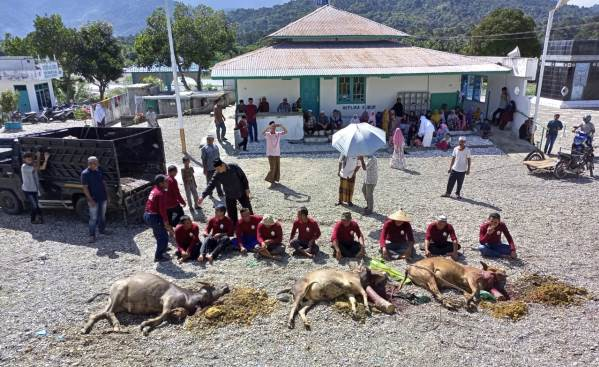 Puskiyai Aceh Salurkan Daging Kurban