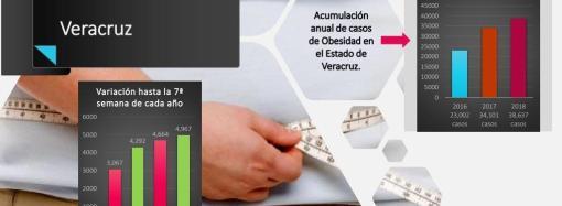 PVEM sigue estructurando comités municipales