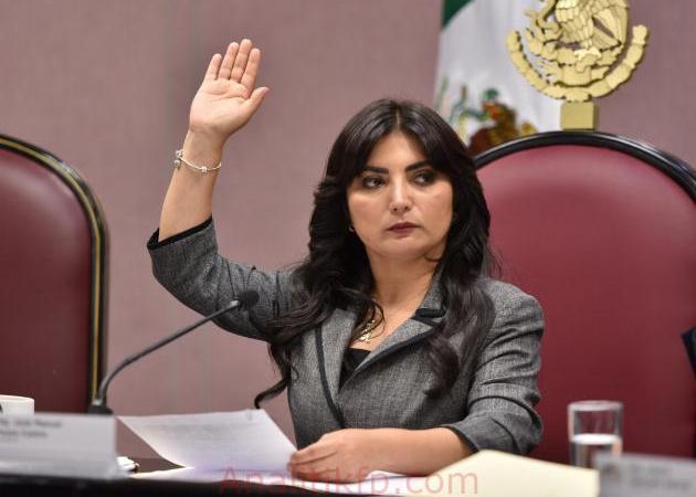 Propone diputada Erika Ayala la comparecencia de la titular de la CEAPP