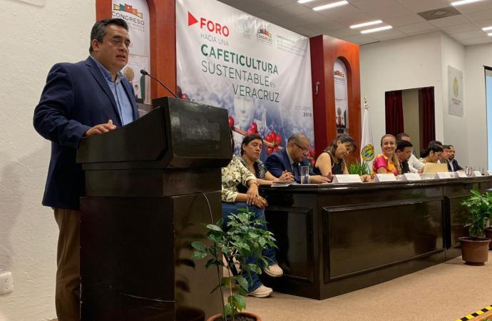 SEDARPA y Congreso de Veracruz reformarán Ley del Café en beneficio de productores