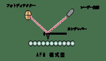 走査型プローブ顕微鏡(SPM・AFM)の原理・特徴