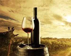 Κρασί-2013-2014-Εξ.