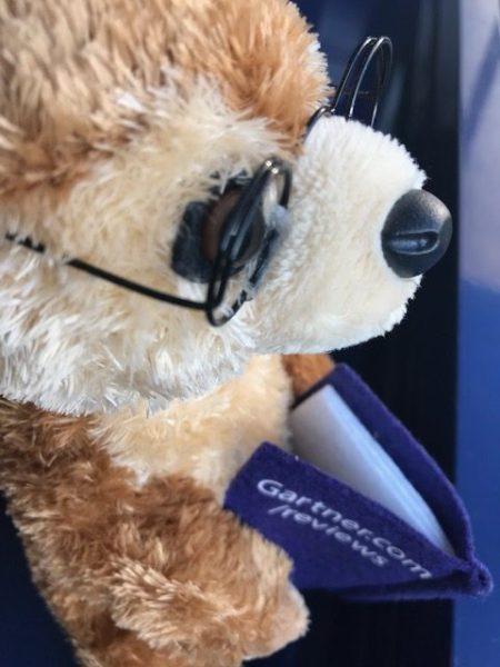 Gartner Peer Insights Marly the Meerkat