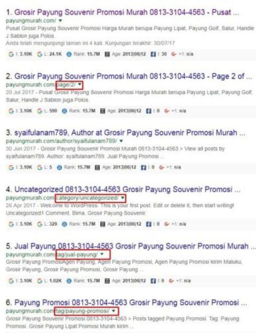 Penampakan Nomor Telepon Pada Hasil Penelusuran Google