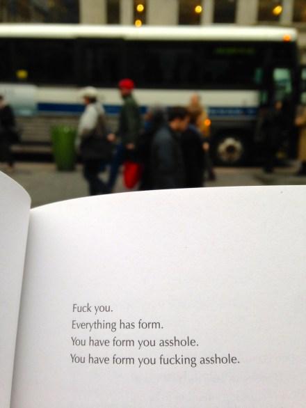 Ariana Reines Lit Literature Poetry