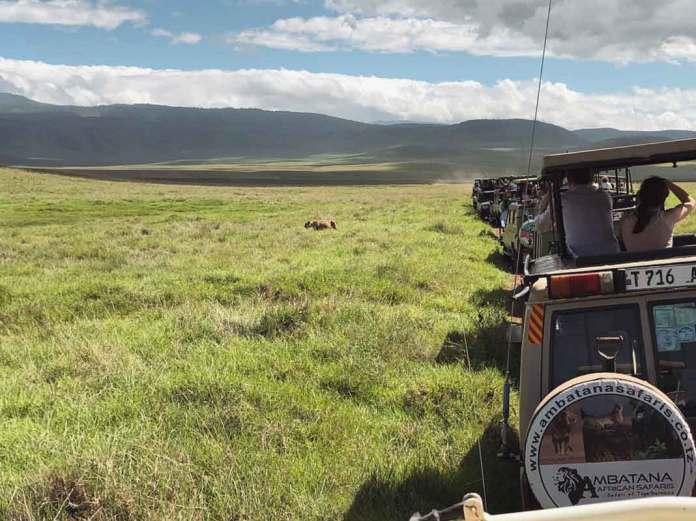 Abordo del safari en el Serengeti, una de las maravillas naturales del mundo