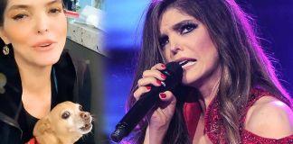 Así reaccionó el perro chihuahua de Ana Bárbara con el nuevo error de la cantante