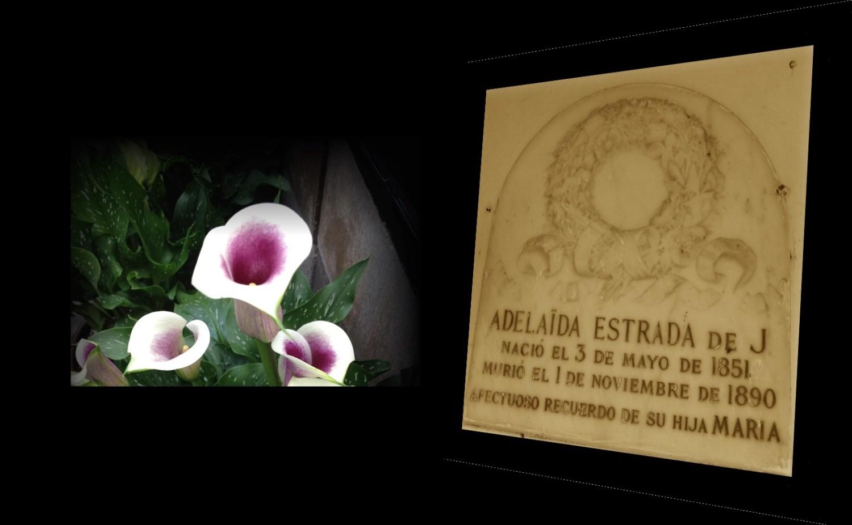 Adelaída Estrada de J