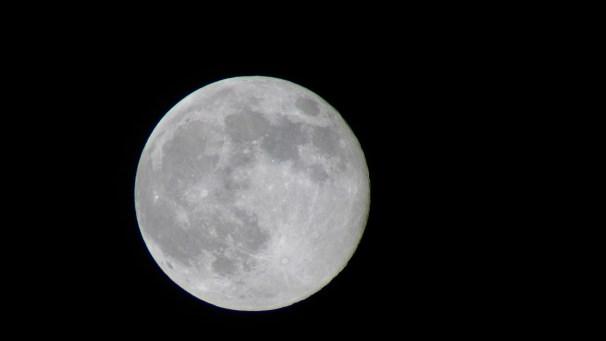 Luna- Aug 10-14 binocular