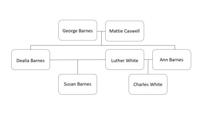 "Family tree  reflecting our new theory that ""Susan's"" father was Luther White."