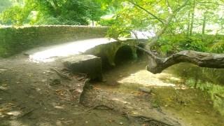 bridge-into-corsham