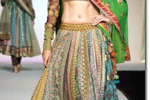 Beautiful Chaniya Choli For Navratri & Garba