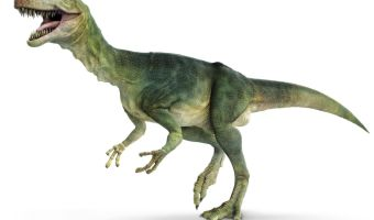 11 Fantastico Facts About Dinosaurs That Will Leave You Astound