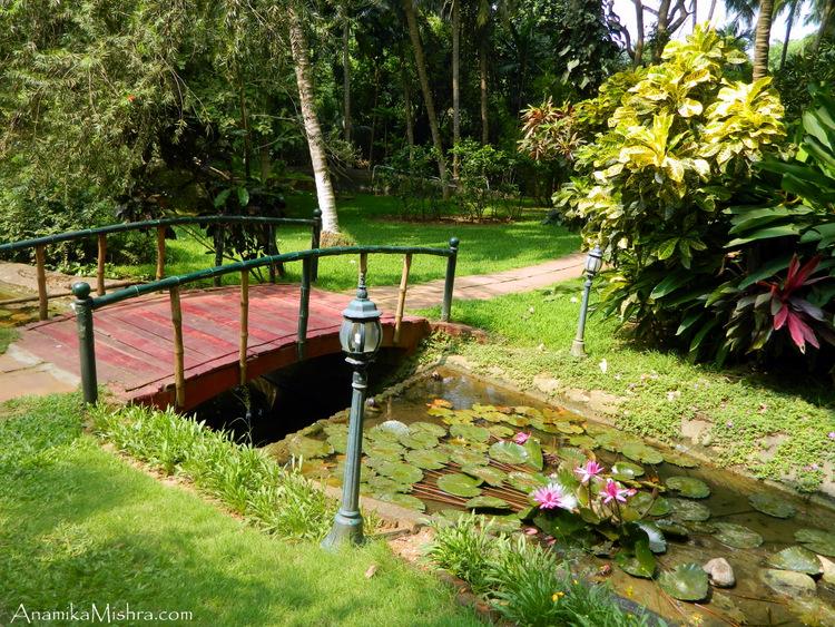 Kairali Health Resort & Spa - More Pics