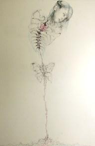 Fósil de mariposa / Butterfly fossil)