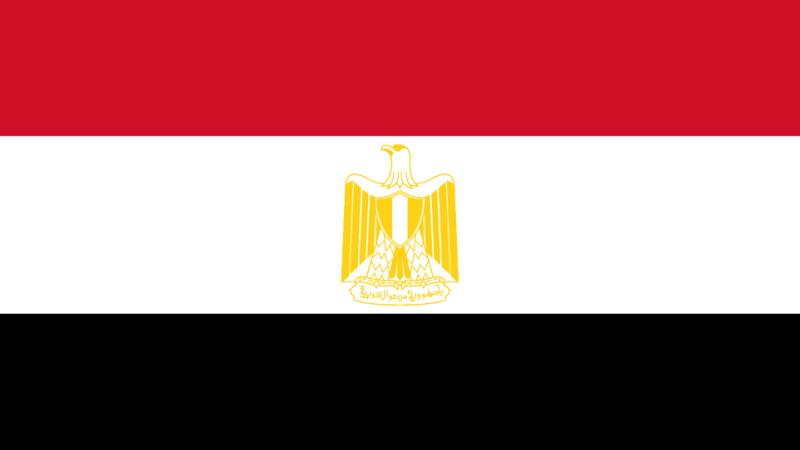 ما هو علم مصر