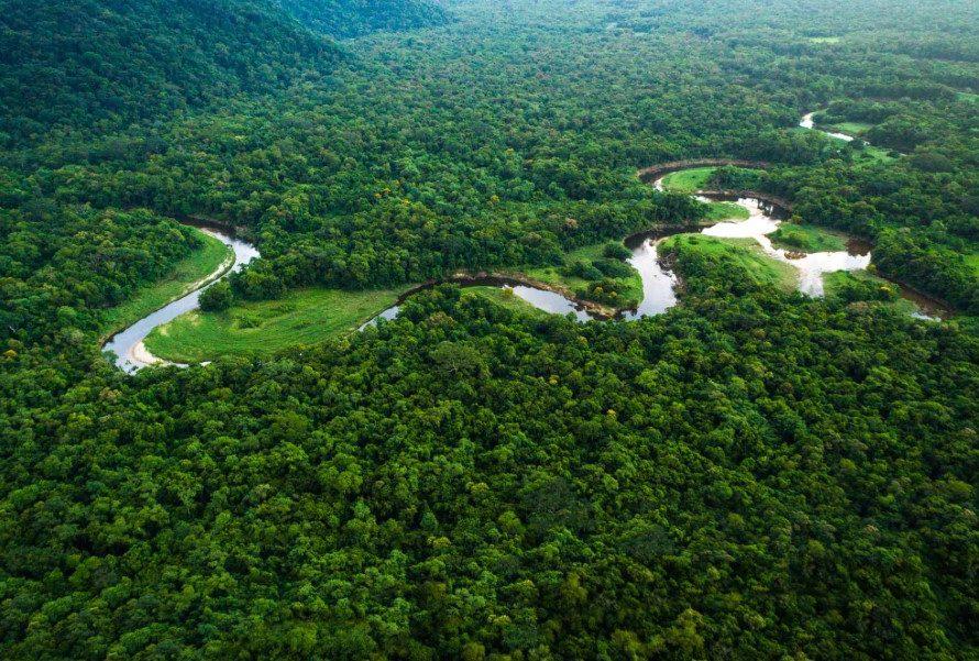 جميع الدول حيث تقع غابات الأمازون المطيرة انا مسافر