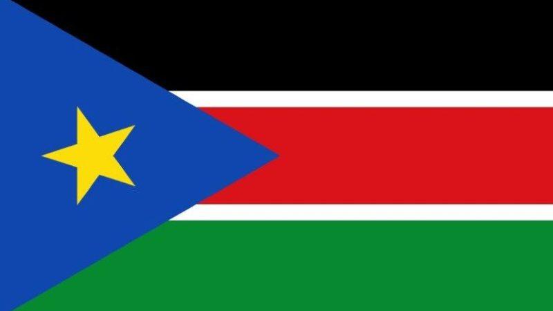 ما هو علم دولة جنوب السودان