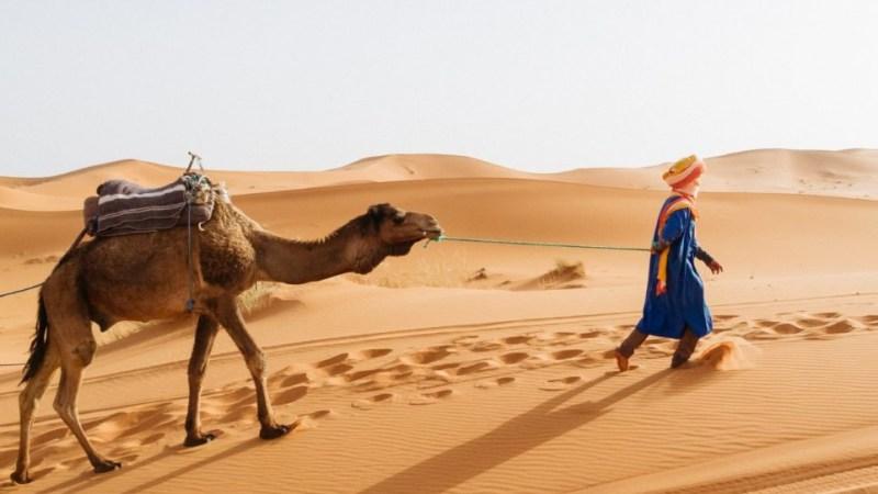 أين تقع الصحراء الكبرى