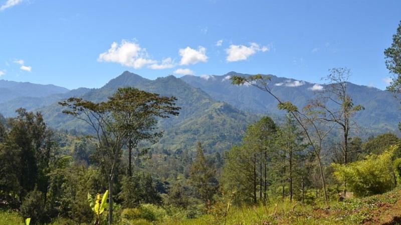 أعلى 10 جبال في اوقيانوسيا