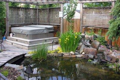courtyard-garden-design