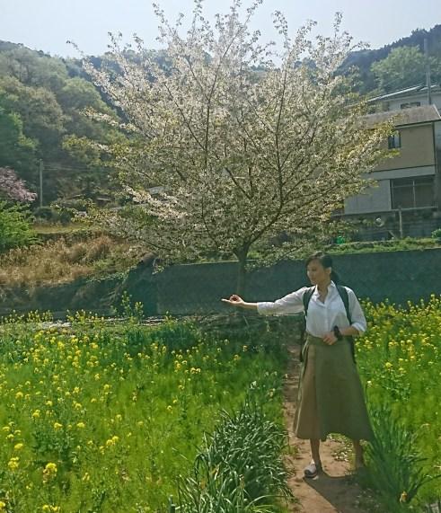 18-04-03-16-03-50-516_deco2058900955.jpg