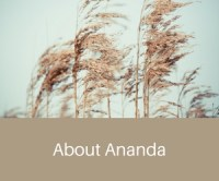 About Ananda