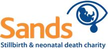 Sands logo