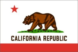 California state flag New york