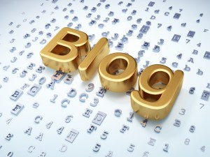 Top Blog Web Hosting Company