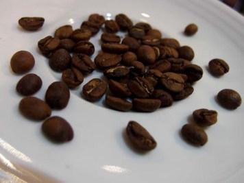 Gordon Street Coffee- Freshly Roasted Beans