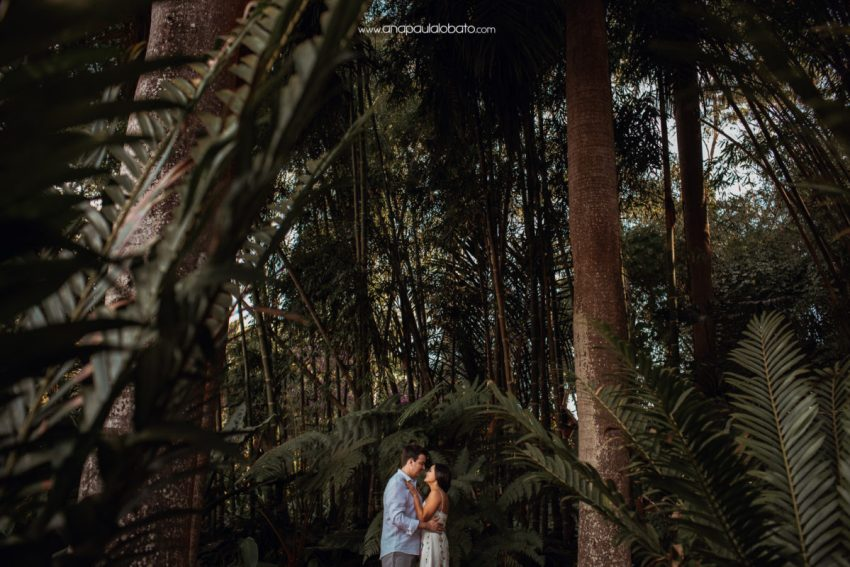 pre wedding natureza