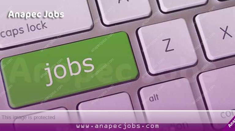 Comment postuler à un emploi en ligne