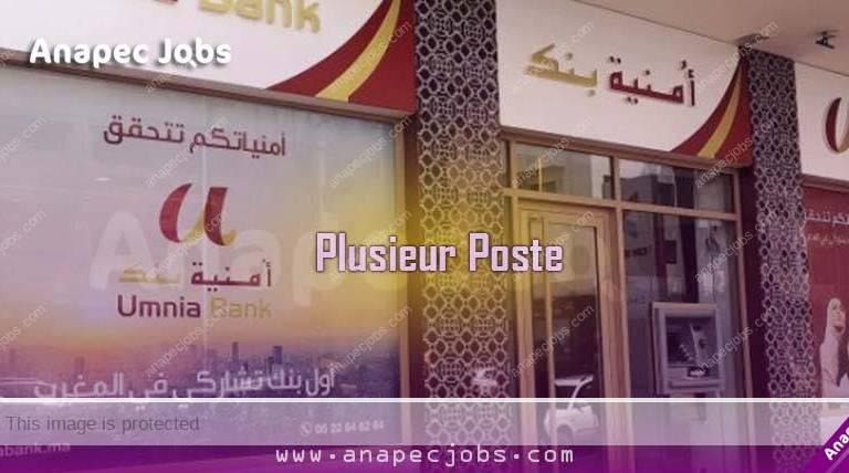 umnia bank recrutement candidature spontanée