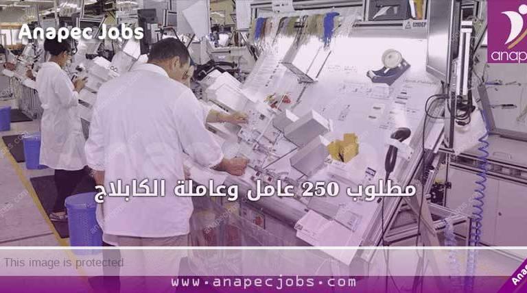 الكابلاج بمكناس مطلوب 250 عامل وعاملة ابتداء من التاسعة إعدادي