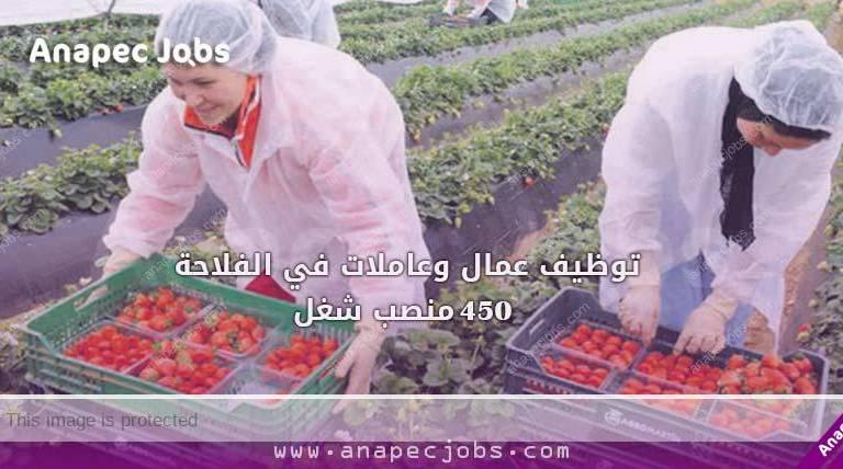 توظيف عمال وعاملات في الفلاحة