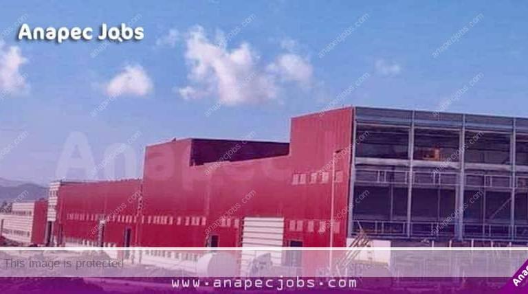 عمل في صناعة السيارات .. مصنع بمدينة طنجة يعلن عن توظيف 185منصب