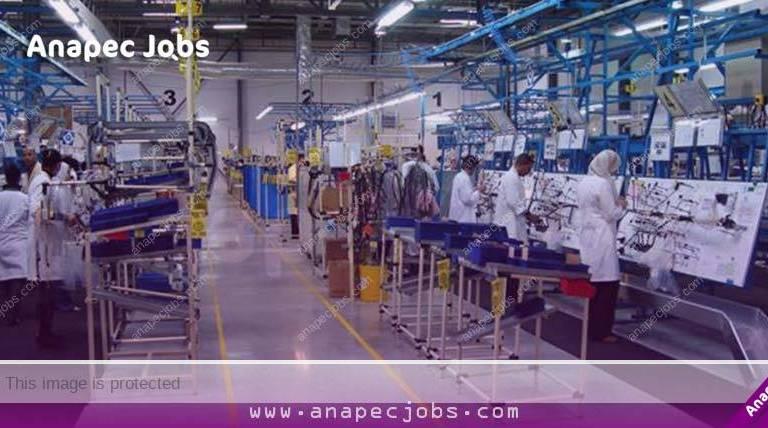 فرصة للناس بالنيفو باك فما فوق.. شركة طالبة عدد كبير من العمال والعاملات في الكابلاج