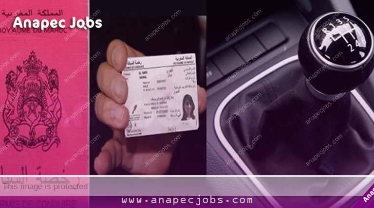 بـ 4000 درهم + علاوات شهرية .. مطلوب 980 شيفور حاصلين على أي رخصة سياقة