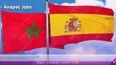 قرار إسباني يمنح المغاربة والعرب 1000 فيزا يوميا من أجل العمل والدراسة والشمل العائلي